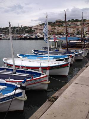 b2ap3_thumbnail_Blog-Cassis-up.jpg