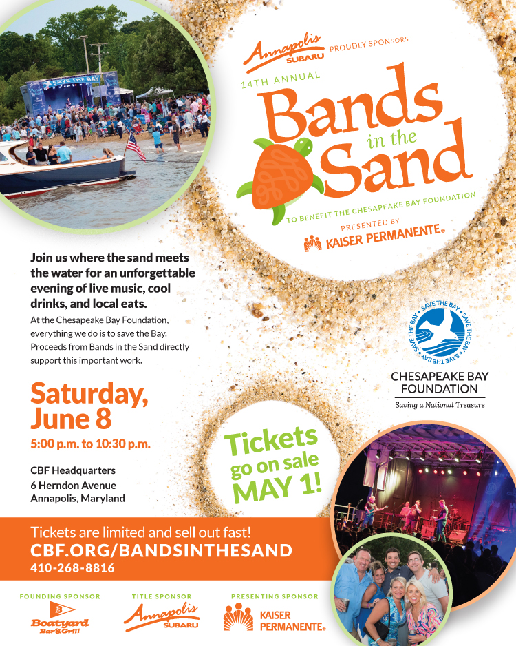 Bands in the Sand 2019